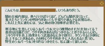 2011・12・01 2011・10・31 サブクエ29 上級編① 問題 シルバーウルフ5匹連行.png