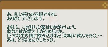 2012・01・30 初級② 納品コメント 羽根.png