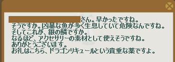 2012・02・06 中級② 納品コメント 銀色の鱗.png