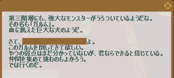 2012・05・06 st17メインクエスト 10-① 問題 ガルム狩り.png