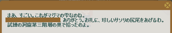 2012・06・07 (2012・05・28)上級② 納品コメント マグマの雫.png