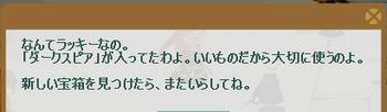 2012・10・15 脈打つ宝箱 1 ダークスピア.png