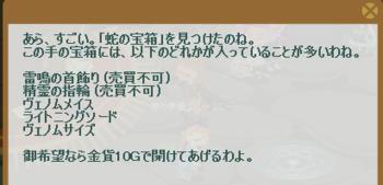 2013・01・01 蛇の宝箱.png