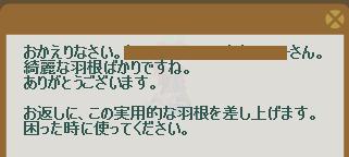 2013・01・07 91週 ナグロフ 2 納品コメント 羽根10本.png