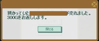 2013・02・16 売れてびっくり 333.33.png