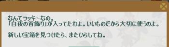 2013・04・21 霜の宝箱 51 白夜の首飾り 4.png