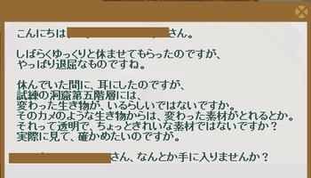 2013・07・01 116週 ナグロフ 1 問題 べっ甲.png