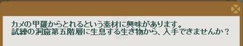 2013・07・01 116週 ナグロフ 2 問題ヒント べっ甲.png