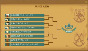 2013・07・28 第三回流星杯 本戦.png