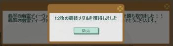 2014・06・29 第5回花嫁杯 本選出場者 メダル18→12枚.png