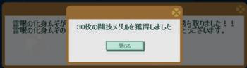 2014・07・27 第4回流星杯 メダル26→30枚back.png