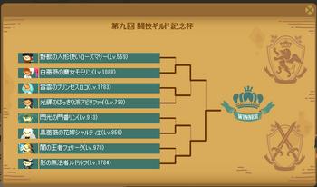 2018・05・27 第9回闘技ギルド杯 トナメ表.png