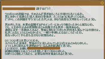 2012・08・08 69週 ヴァルヴァラ① 問題 スライム50体.png