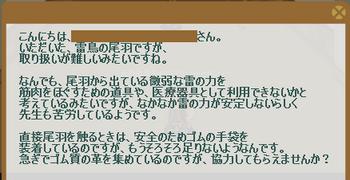 2012・12・10 87週 ナグロフ① 問題 ゴム質の革.png